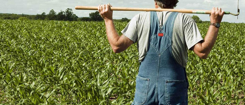 Какие риски при покупке земельных участков поджидают покупателей? Как избежать обмана и не нарваться на мошенников? Читайте на нашем ресурсе по уголовному праву.